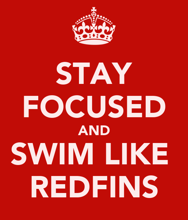 STAY FOCUSED AND SWIM LIKE  REDFINS
