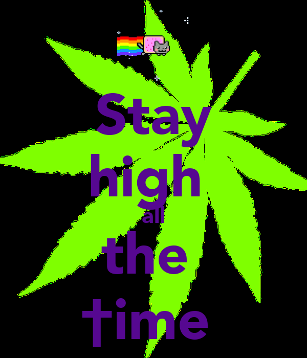 Stay high  all the  †ime
