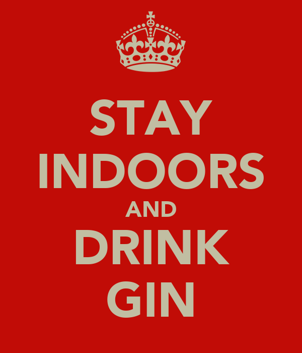 STAY INDOORS AND DRINK GIN