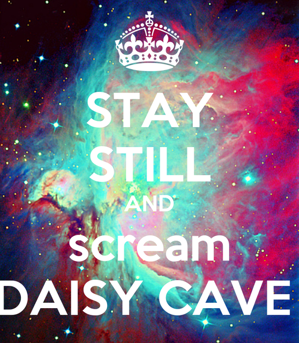 STAY STILL AND scream DAISY CAVE