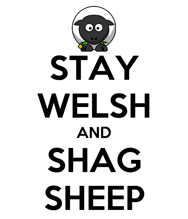 STAY WELSH AND SHAG SHEEP
