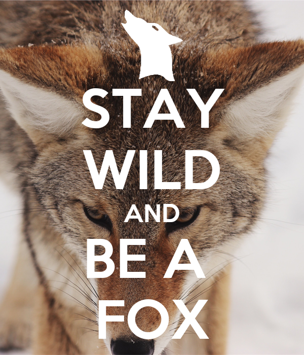 STAY WILD AND BE A  FOX