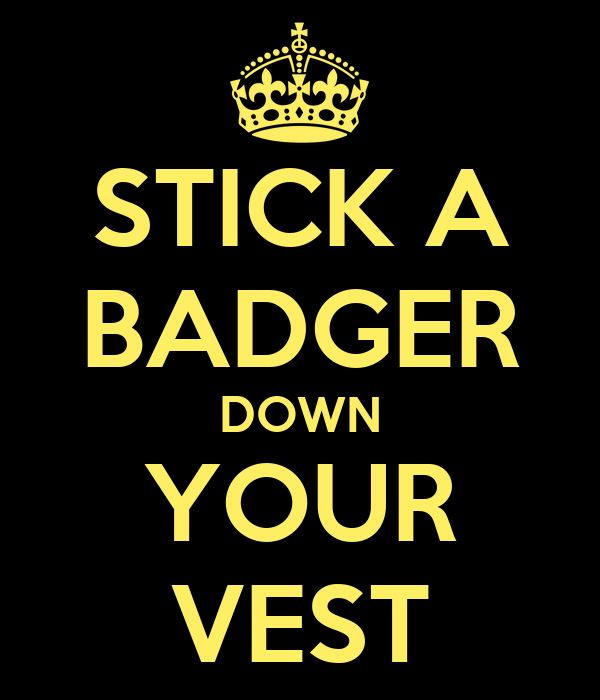 STICK A BADGER DOWN YOUR VEST