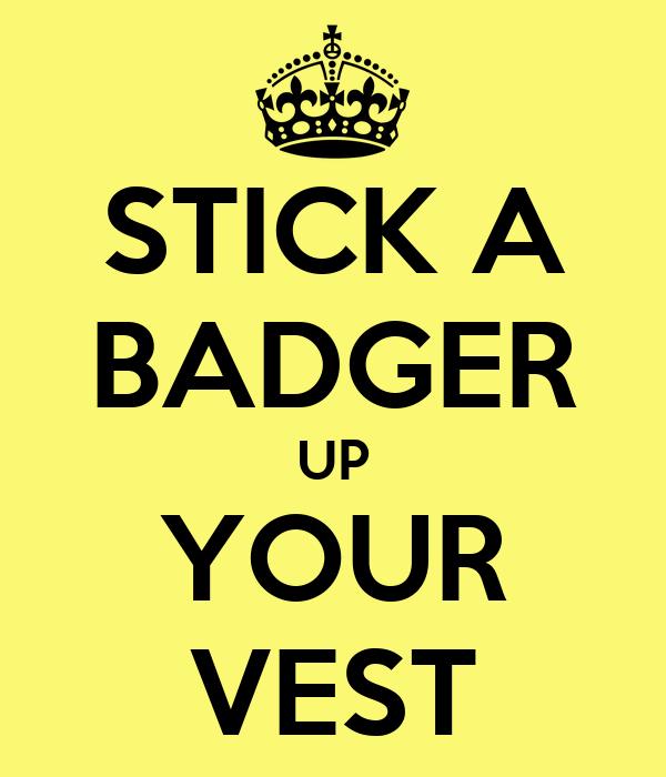 STICK A BADGER UP YOUR VEST