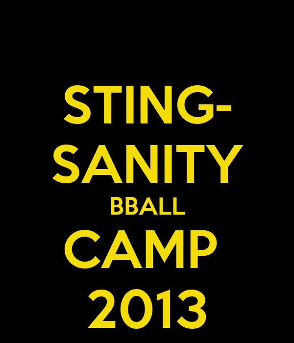STING- SANITY BBALL CAMP  2013