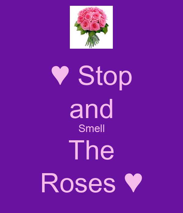 ♥ Stop and Smell The Roses ♥