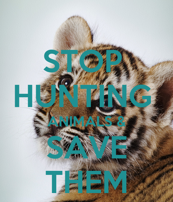 STOP  HUNTING  ANIMALS & SAVE THEM
