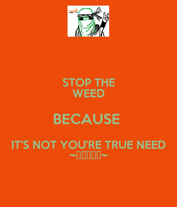 STOP THE WEED BECAUSE  IT'S NOT YOU'RE TRUE NEED ~كريمة~