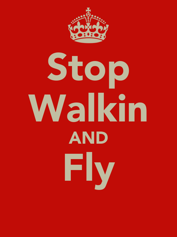 Stop Walkin AND Fly