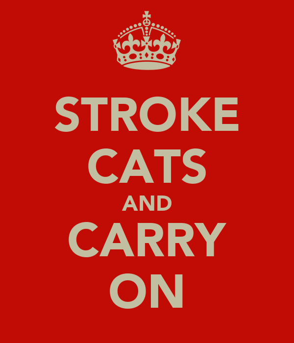 STROKE CATS AND CARRY ON