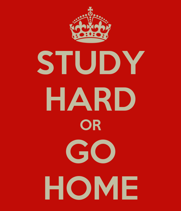 STUDY HARD OR GO HOME