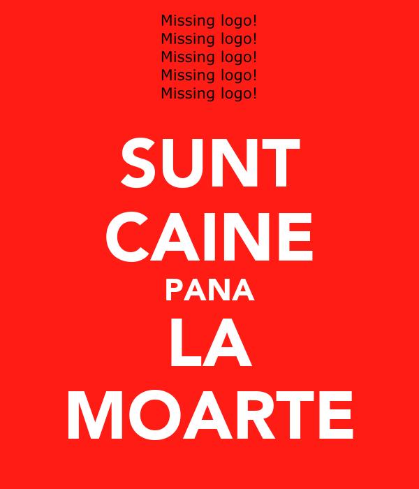 SUNT CAINE PANA LA MOARTE