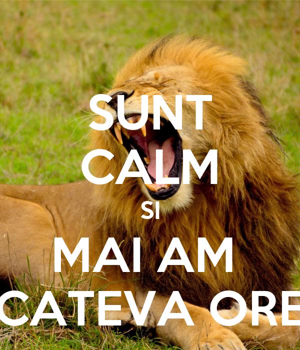 SUNT CALM SI MAI AM  CATEVA ORE
