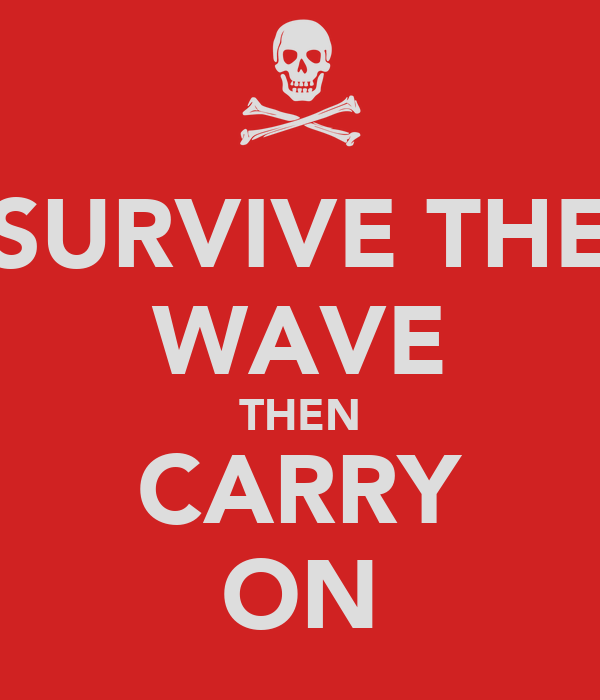 SURVIVE THE WAVE THEN CARRY ON