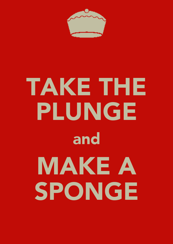 TAKE THE PLUNGE and MAKE A SPONGE