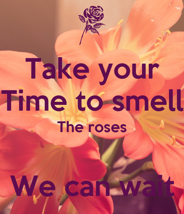 Take your Time to smell The roses  We can wait