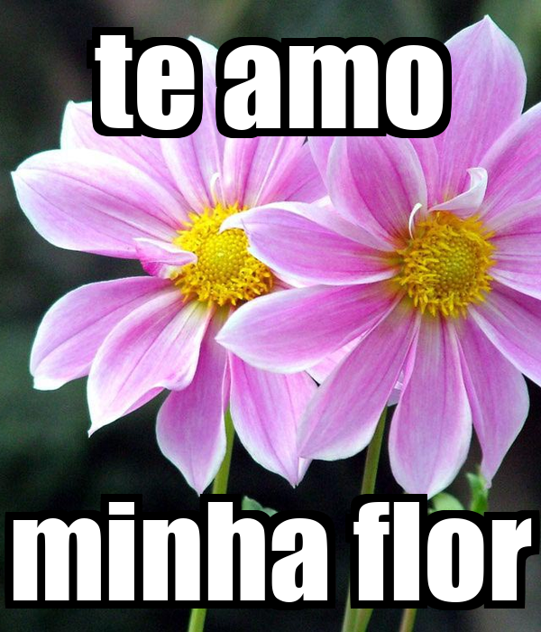 te amo minha flor