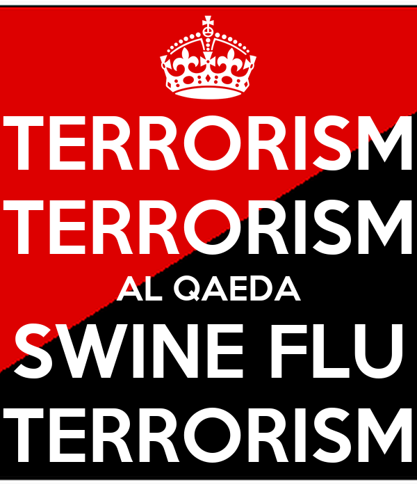 al qaeda terrorism An essay by rohan gunaratna examines al-qaeda ideology, and how it impacts islamist terrorism's strategies and tactics.