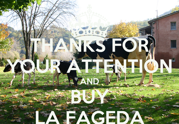 THANKS FOR YOUR ATTENTION AND BUY LA FAGEDA