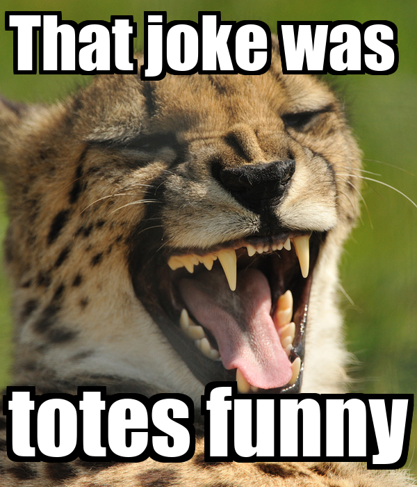 That joke was  totes funny
