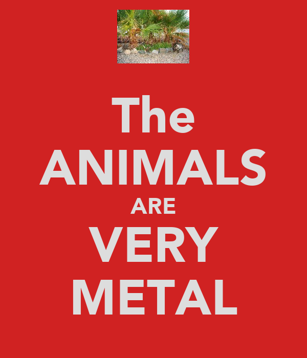 The ANIMALS ARE VERY METAL