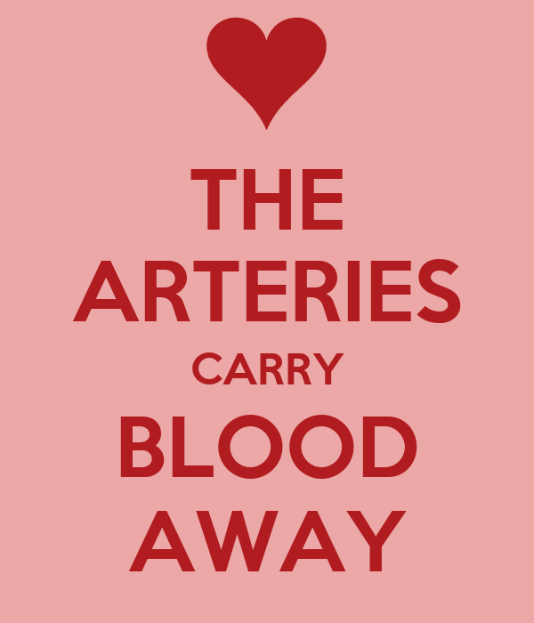 THE ARTERIES CARRY BLOOD AWAY