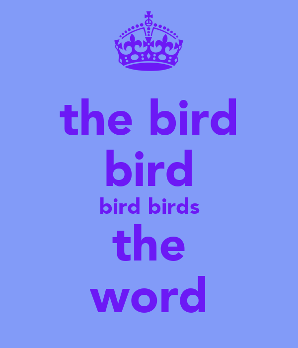 the bird bird bird birds the word