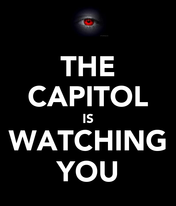 THE CAPITOL IS WATCHING YOU