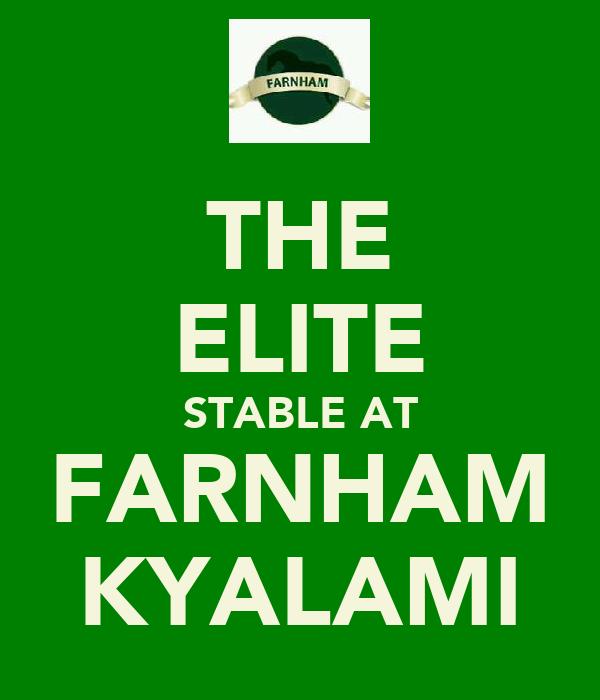 THE ELITE STABLE AT FARNHAM KYALAMI