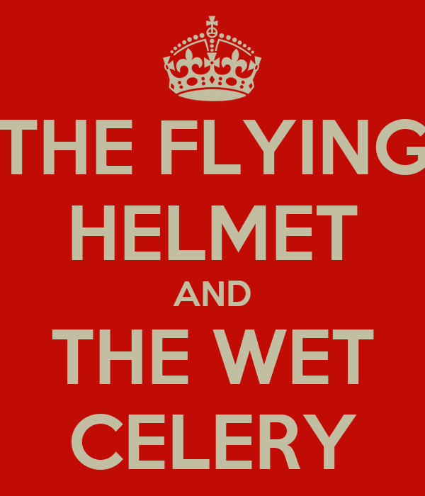 THE FLYING HELMET AND THE WET CELERY