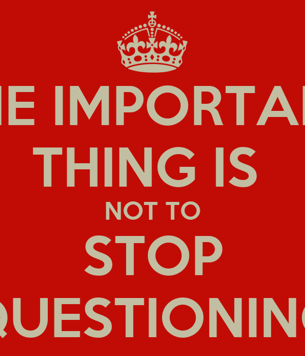 THE IMPORTANT THING IS  NOT TO STOP QUESTIONING