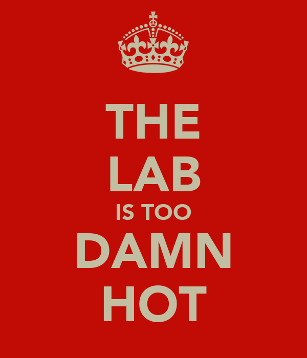 THE LAB IS TOO DAMN HOT