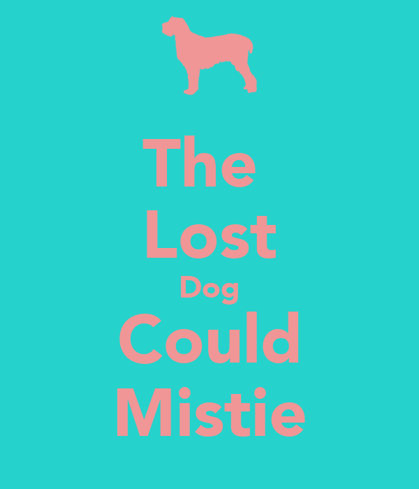 The  Lost Dog Could Mistie