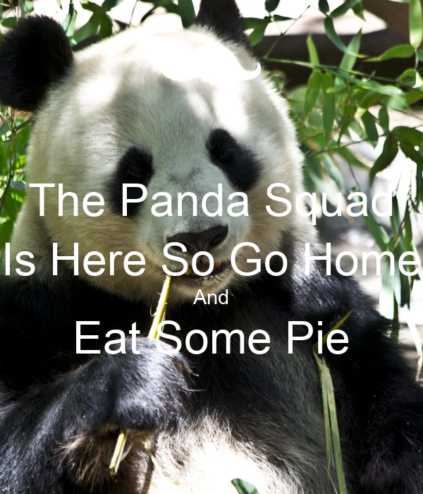 The Panda Squad Is Here So Go Home And Eat Some Pie