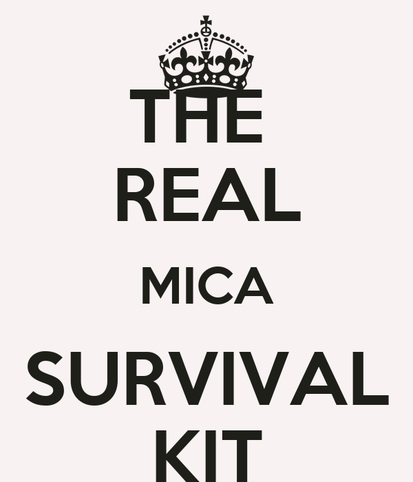 THE  REAL MICA SURVIVAL KIT