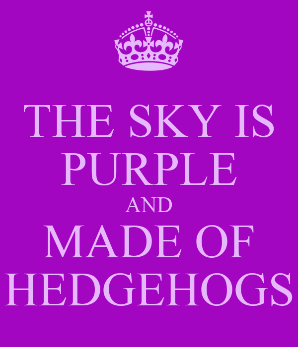 THE SKY IS PURPLE AND MADE OF HEDGEHOGS