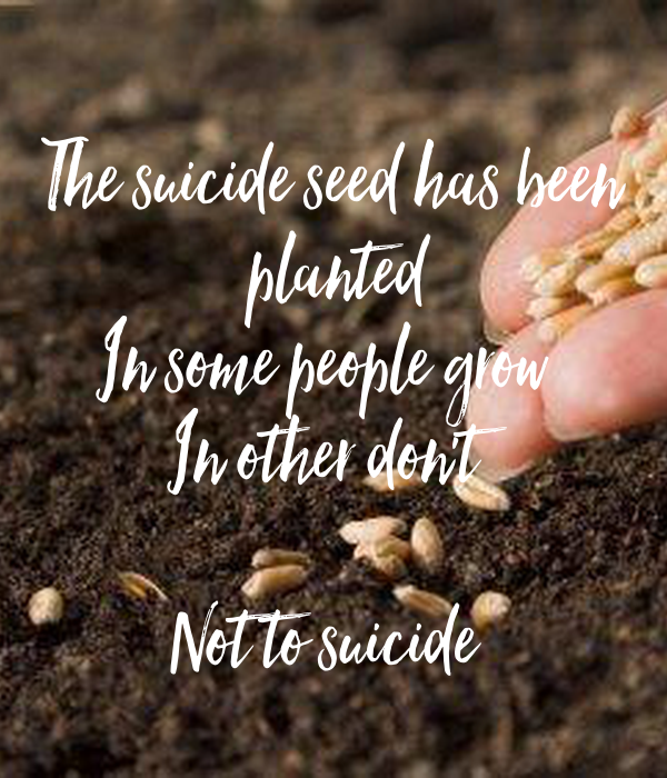 The suicide seed has been  planted In some people grow  In other don't   Not to suicide