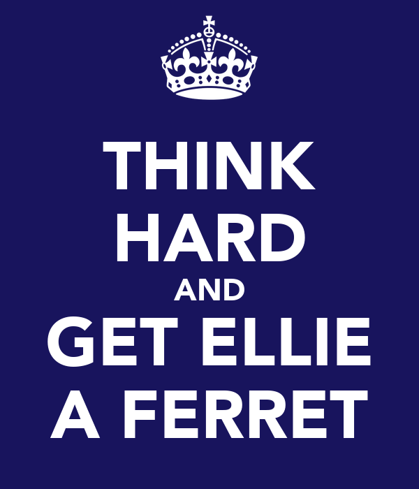 THINK HARD AND GET ELLIE A FERRET