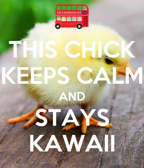 THIS CHICK KEEPS CALM AND STAYS KAWAII