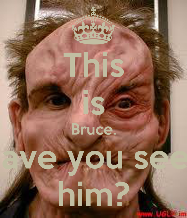 This is Bruce. Have you seen him?