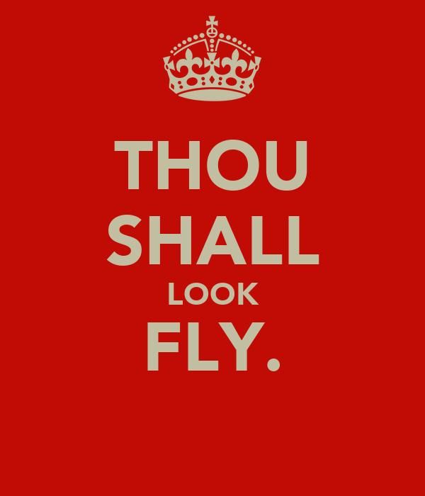 THOU SHALL LOOK FLY.