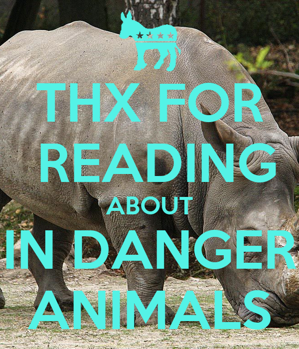 THX FOR  READING ABOUT IN DANGER ANIMALS