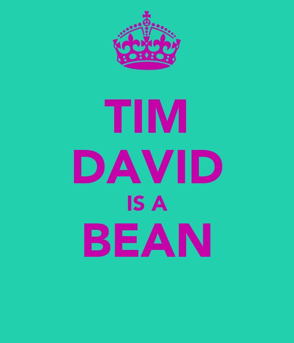 TIM DAVID IS A BEAN