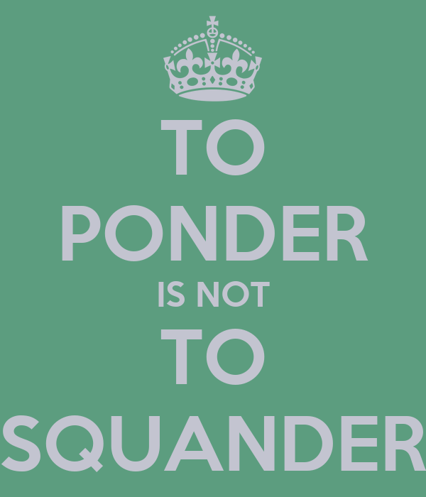 TO PONDER IS NOT TO SQUANDER