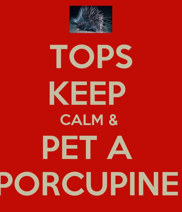TOPS KEEP  CALM &  PET A  PORCUPINE