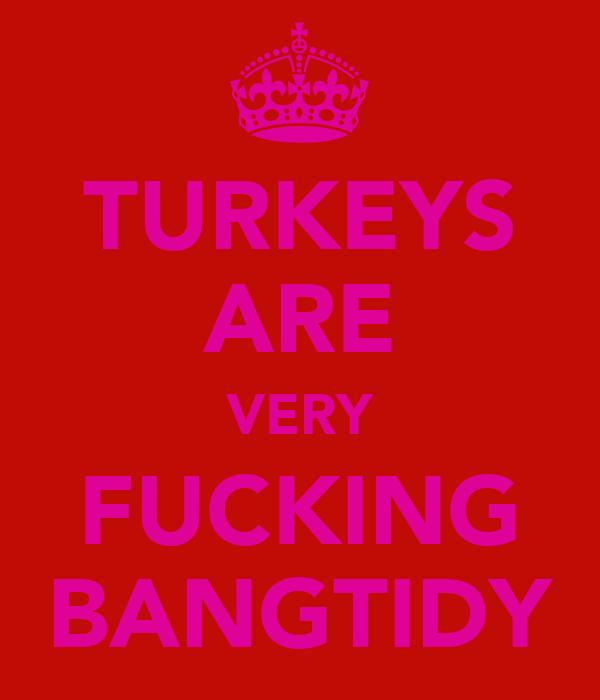TURKEYS ARE VERY FUCKING BANGTIDY