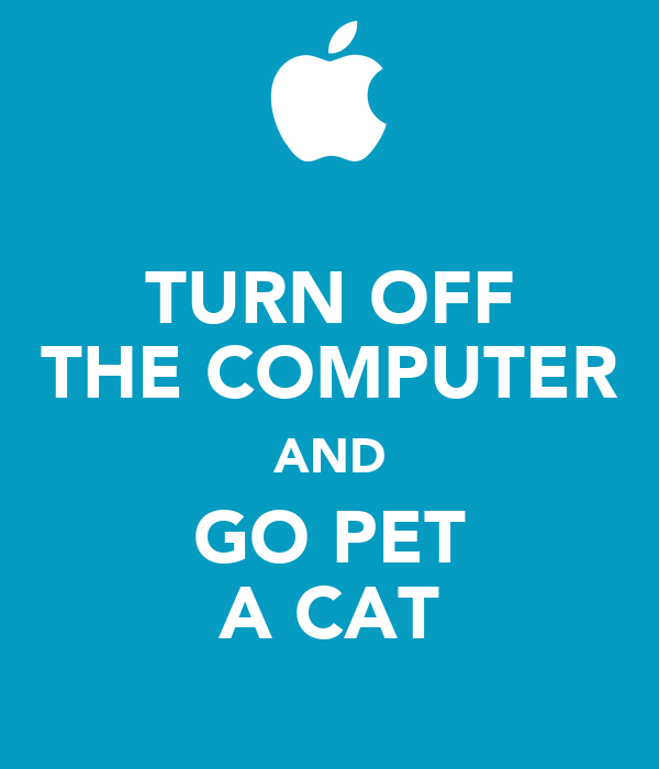 TURN OFF THE COMPUTER AND GO PET A CAT