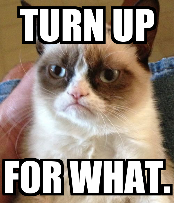 Image result for turn up for what