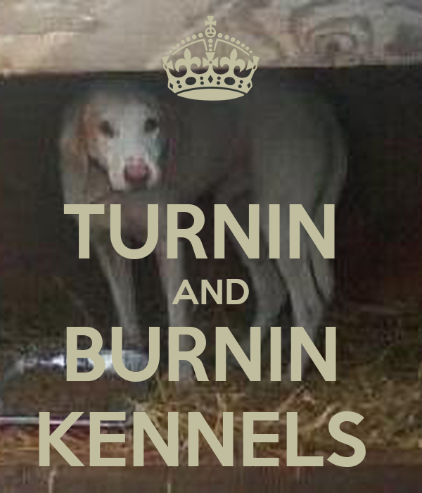 TURNIN  AND BURNIN  KENNELS