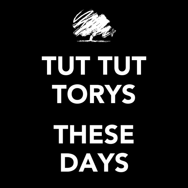 TUT TUT TORYS  THESE DAYS